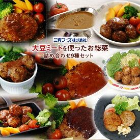 レトルト 惣菜 三育フーズ 大豆ミートを使った惣菜 お試し 詰め合わせ 9種セット ヘルシー 野菜 ベジタリアン 弁当 ランチ