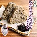 有機 発芽玄米 おにぎり(しそ)90g×2個 コジマフーズ オーガニック organic
