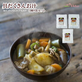 レトルト惣菜 具だくさんお汁 3種9食セット (豚汁、けんちん汁、いも煮汁) 1年保存