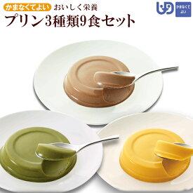 おいしく栄養 プリン 3種類9食セット スイーツ かまなくてよい(区分4) 介護食 ホリカフーズ
