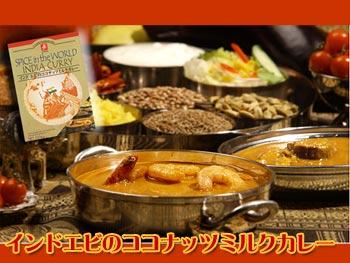 インド エビのココナッツミルク カレー 170gX6箱セット(本格インドカレー) 【あす楽対応】