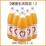 EM産地直送青森県産りんごジュース(1L×6本入り)