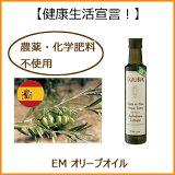 EMEcoliborエコリボルオリーブオイル(500ml)