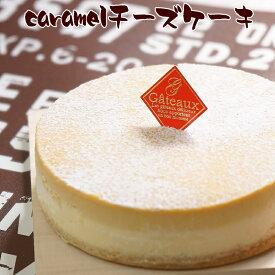 とりいさん家のCaramelチーズケーキ(4〜5人分)味わいのスイーツ ニューヨークチーズケーキ 濃厚 お菓子 デザート キャラメル 誕生日 ホールケーキ パーティー お取り寄せ バースデー 有名 ギフト サワークリーム 冷凍 ドゥーブルフロマージュ 子供