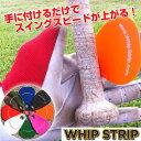 Whipstrip