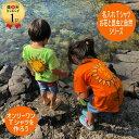 兄弟 お揃い 出産祝い 姉妹 兄妹 姉弟 名入れ tシャツ キッズ ベビー 大人 向日葵 虹 太陽 カブトムシ 花柄 蝶々 ハイビスカス 月 星 …