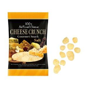 トップフード チーズクランチ ソルト 20袋 100001873 メーカ直送品  代引き不可/同梱不可