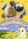 【中古】DVD▼ななみちゃんのわくわくどうぶつえん たてがみふさふさライオンさんの巻▽レンタル落ち