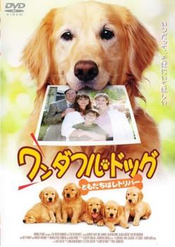 ワンダフル・ドッグ【洋画 中古 DVD】メール便可 レンタル落ち
