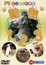 動物と1・2・3【趣味、実用 中古 DVD】メール便可