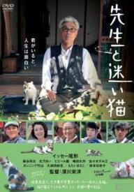 先生と迷い猫【邦画 中古 DVD】メール便可 レンタル落ち