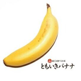 ともいきバナナ 5本入り