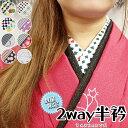 【数量限定】2way半衿 半襟 学祭 文化祭 着物 kimono きもの おしゃれ 着付け小物 和装小物 【定形外郵便OK】市松 チェック ストライプ…