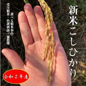 【令和2年新米】20kg(10×2) お花屋さんが作ったお米 コシヒカリ 福島県産 受注後精米 減農薬 選べる精米歩合