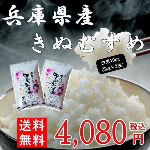 平成29年産兵庫県産きぬむすめ10kg(5kg×2袋) お米 米 10kg 送料無料