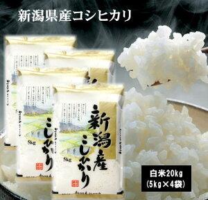 2年新潟県産こしひかり20kg(5kg×4袋) お米 米 コシヒカリ 20kg 送料無料(沖縄県は除く)