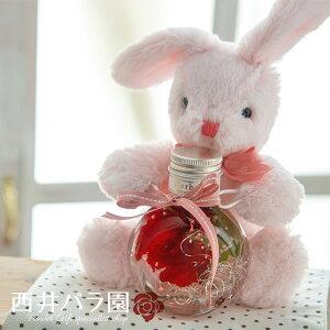 誕生日 かわいい ハーバリウム プリザーブドフラワー 花瓶 ぬいぐるみ だきつきラビット うさぎ 誕生日 プレゼント ギフト