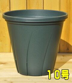 根はり鉢 グリーン 10号 ZIK-10000