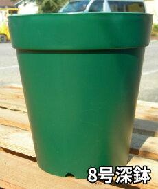 バラの家 8号深鉢 バラ向き ZIK-10000