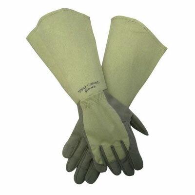 ウエストカウンティー ローズ 【モス】 (革手袋、皮手袋、ガーデングローブ、レディース メンズ、園芸手袋) ※土と同梱可※