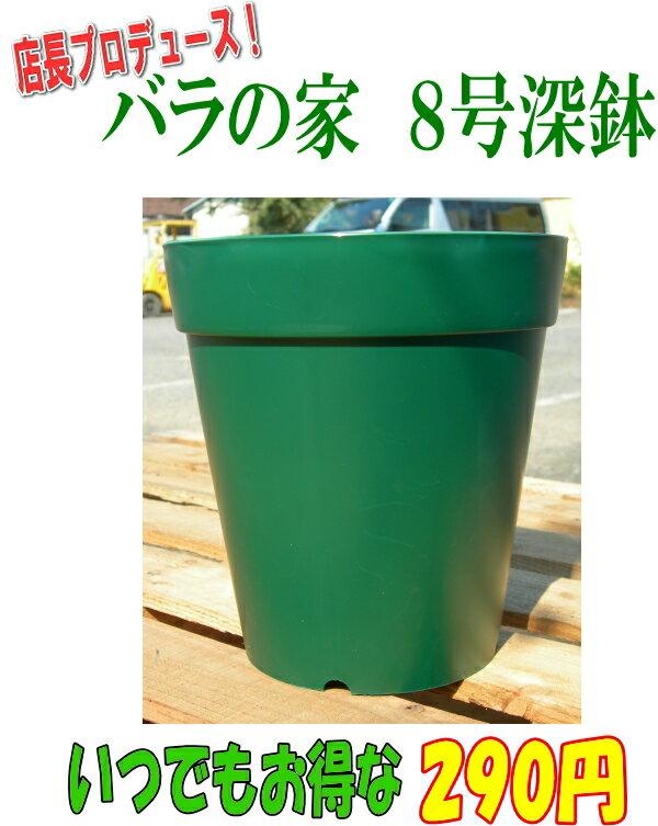 【NEWモデル】 バラの家 8号深鉢 バラ向き ZIK-10000