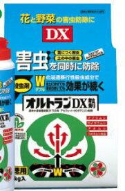 {殺虫剤}オルトランDX粒剤 1kg ※土セットと同梱可※(1個まで) ZIK-10000