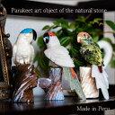 インコ セキセイインコ 鳥 小鳥 天然石 手彫り オブジェ インテリア リアル かわいい インテリア小物・置物 小物 雑貨 いんこ プレゼン…