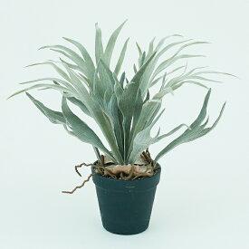 【造花】【フェイクグリーン】 ビカクシダ ポット 32【インテリア 観葉植物 人工植物 おしゃれ イミテーション 鉢付き】
