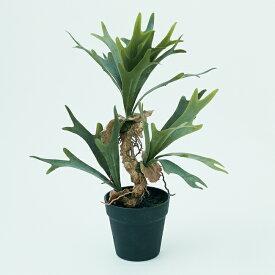 【造花】【フェイクグリーン】 ビカクシダ ポット 52【インテリア 観葉植物 人工植物 おしゃれ イミテーション 鉢付き】