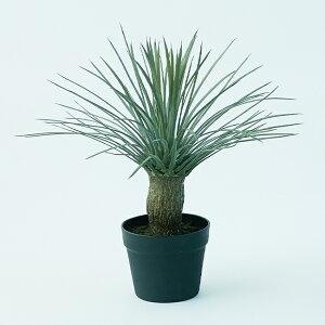 【造花】【フェイクグリーン】 ユッカ ロストラータ ポット 47 【インテリア 観葉植物 人工植物 おしゃれ 多肉植物 サキュレント】