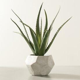 【造花+鉢セット】アロエベラ ポット 48 + グルレ13 【植木鉢 フェイクグリーン おしゃれ インテリア 観葉植物 中型】