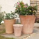 PJロングトム 3点セット  ≪植木鉢/おしゃれ/寄せ植え/陶器/テラコッタ/素焼き鉢≫