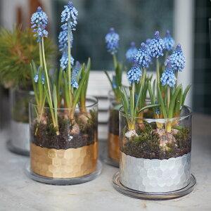 シリンダーガラスポット 11 受け皿付き【植木鉢 おしゃれ 鉢カバー ガーデン雑貨 かわいい インテリア】