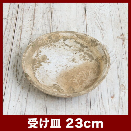 ホワイト受け皿D 23cm  ≪植木鉢/おしゃれ/ラフ/陶器/テラコッタ/素焼き鉢≫