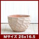 ウィトン 908 赤土(白土焼付) Mサイズ  ≪植木鉢/陶器/テラコッタ・素焼き鉢より堅牢≫