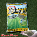 ゴルフ場も太鼓判!バロネス 芝生の元肥 2.5kg 種苗初期生育向け。 芝生の肥料 種まき時 芝張り時【あす楽対応】【共…