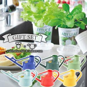 ガーデニング ギフトセット 底面給水栽培セット フレッシュフィール 葉野菜 & 英国 HAWS ハンディインドアカン 0.7L じょうろ 選べる4種類×6カラー ギフト