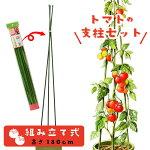 キュウリ支柱セットネット付き組立式高さ180cm家庭菜園用