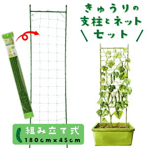 キュウリ支柱セット ネット付き 組立式 高さ180cm 家庭菜園用
