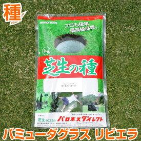 バミューダグラス リビエラ 1kg お庭の広さ12〜18坪用 バロネス暖地型 芝生の種 多年草 発芽適温摂氏20度以上です。/共栄社/【店頭受取対応商品】