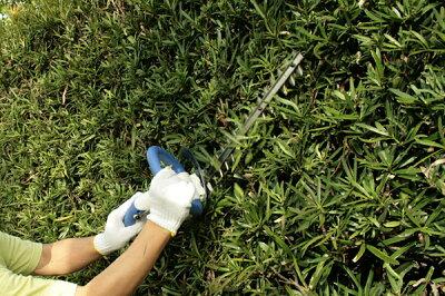 日立コードレス植木バリカン刈込み幅350mmタイプFCH14DSL(35)
