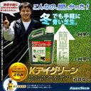 芝生用着色剤 バロネス Kアイグリーン 1kg/あす楽対応/共栄社/【店頭受取対応商品】