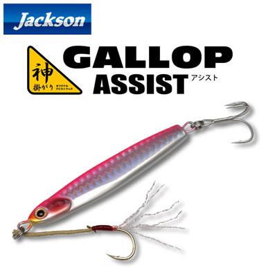 ●ジャクソン GALLOP ギャロップ アシスト (40g) 【メール便配送可】 【まとめ送料割】