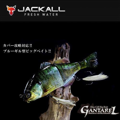●ジャッカル ガンタレル 【まとめ送料割】