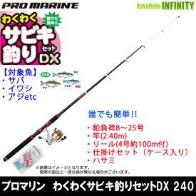 【在庫限定59%OFF】プロマリン わくわくサビキ釣りセットDX 240 海釣り入門セット