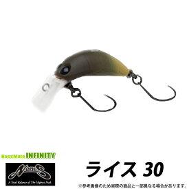 ノリーズ ライス 30 (1) 【メール便配送可】 【まとめ送料割】