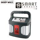 【送料無料】ACデルコ ボイジャー ディープサイクル バッテリー 充電器 ディープウェル DEEP WELL スマートチャージ…