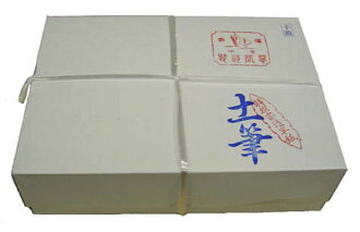"""Tukushi """"Hanshi"""" 33.2×24.3cm <土筆 半紙>"""