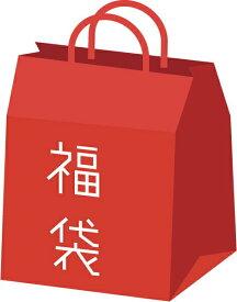 【9/25限定★エントリーでポイント11倍】ゲムマ大阪2020 ボードゲーム10000円福袋