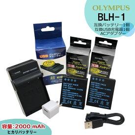 送料無料★コンセント充電可能★ OLYMPUS オリンパス BLH-1 互換バッテリー 2点 &互換USB充電器 の 3点スペシャルセット E-M1X / OM-D E-M1 / OM-D E-M1 Mark2 / OM-D E-M1 MarkII コンセント充電用ACアダプター付(a1) OM-D E-M1 MarkIII